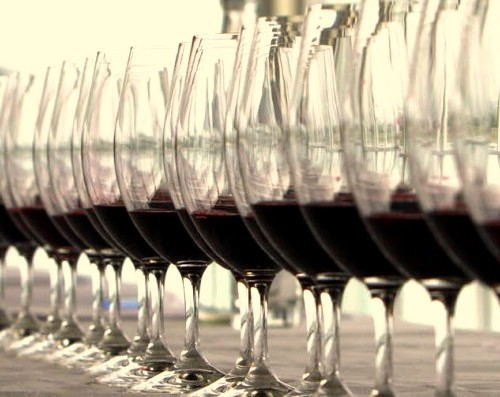 geelong wine Show web ready-28
